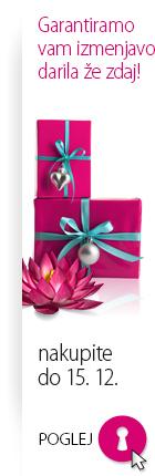 Božično nakupovanje brez straha s Salma.si